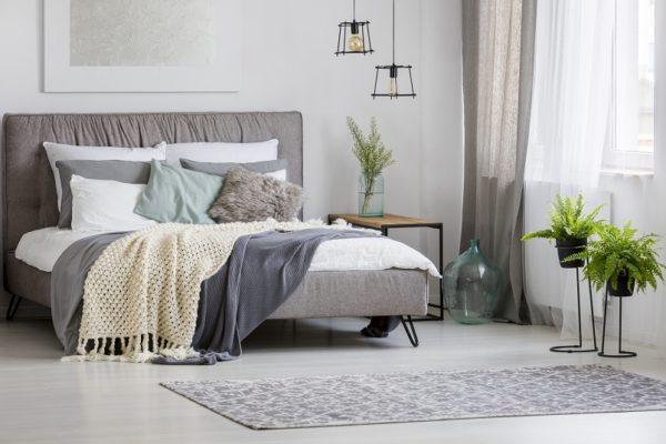 Pflanzen im Schlafzimmer verbessern das allgemeine Klima