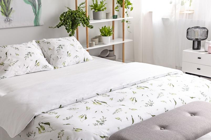 luftreinigende Pflanzen im Schlafzimmer sind eine Wohltat